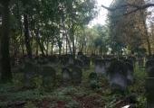 Cmentarz Żydowski w Piotrkowie Trybunalskim.