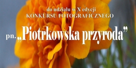Konkurs fotograficzny z MOK